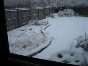 Christmas garden1 2010
