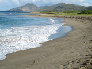 St. Kitts5