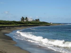 St. Kitts6