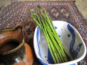 asparagus4 2011