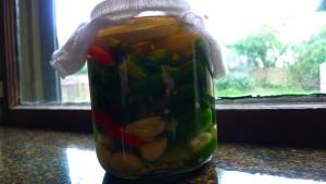 fermented-hot-sauce1