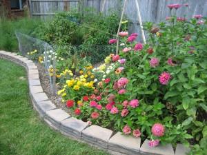 garden 8 August 23 '09