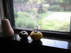 garden bounty Sept. 9 '09