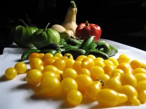 garden bounty1 Oct 16, '09