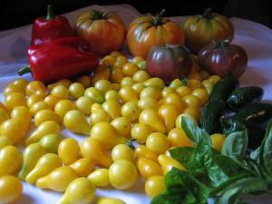 garden bounty1 Sept 3 '09