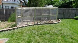 garden enclosure1