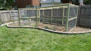 garden enclosure2
