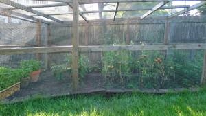 garden1 7-30-17