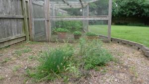 garden1 7-5-19