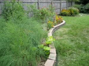 garden1 Aug 17 '10