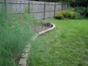 garden1 August 6 2011