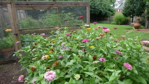 garden1 July 26 '15