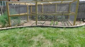 garden1 june 20, 2012