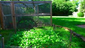garden1 june 7 '16