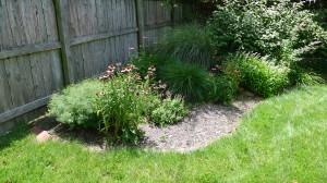 garden12 june 20, 2012