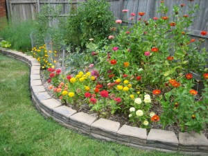 garden2 Aug 17 '10
