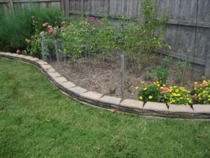 garden3 August 6 2011