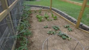 garden5 june 20, 2012