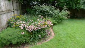garden6 July 26 '15