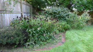 garden6 Sept 5 '15
