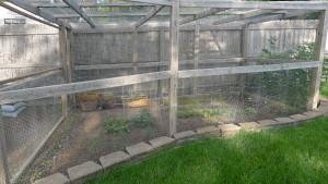garden7 5-25-15