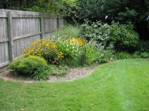 garden7 August 6 2011