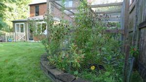 garden7 Sept 5 '15