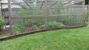 garden8 July 26 '15