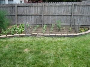 garden9 2011