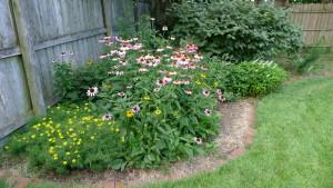 garden9 7-10-16