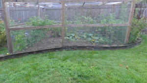 garden9 Sept 5 '15
