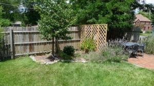 garden9 june 20, 2012