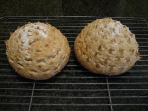 oatmeal wheat bread3