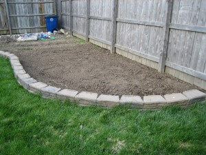tilled garden 1 2010
